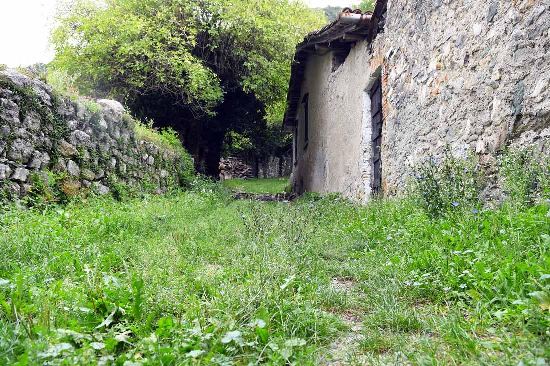 Azienda agricola Alpe di Megna