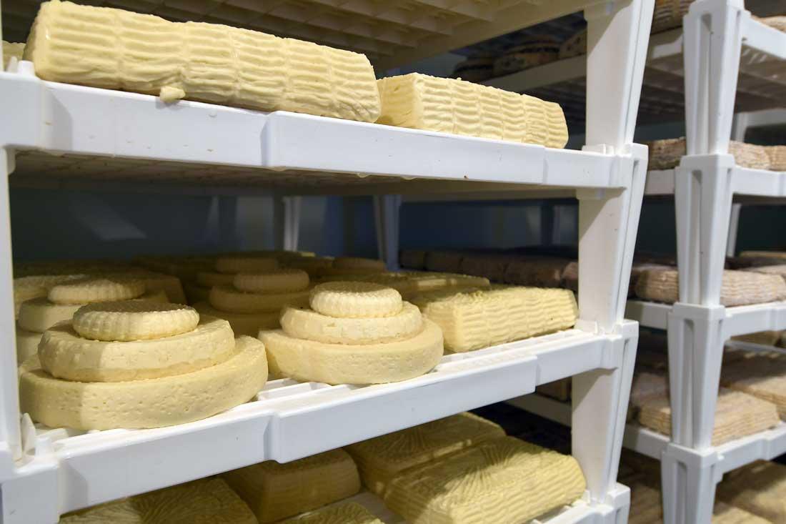 formaggi produzione como lecco